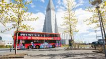 Tour hop-on hop-off di Reykjavik con City Sightseeing, Reykjavik, Tour hop-on/hop-off