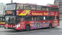 Tour Hop-On Hop-Off di Varsavia con City Sightseeing, Varsavia, Tour hop-on/hop-off