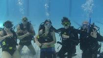 Private PADI Open Water Diver Certification Course, Placencia, Scuba Diving