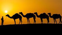 Khaki Desert Trek, Dubai, Hiking & Camping