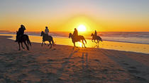 Beach Horseback Riding in Cartagena, Cartagena