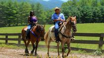 Georgia Horseback Ride with Wine Tasting, Atlanta