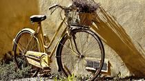 Florence city VIP guided bike tour, Florence, Bike & Mountain Bike Tours