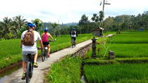 Half-Day Electric Bike Tour of Ubud, Ubud, null