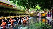 Half-Day Ubud Electric Bike Tour to Tirta Empul Water Temple, Ubud, Bike & Mountain Bike Tours
