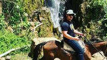 Private Day Tour of Jardín with Horseback Ride and Coffee Villa from Medellin , Medellín, Private ...