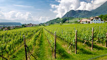 Half-Day White Wine tour from Lake Garda and visit of Borghetto hamlet, Lake Garda, Wine Tasting & ...