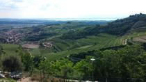 Valpolicella Experience! Wine and Food tour from Lake Garda, Lake Garda, Food Tours