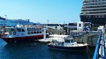 Mykonos Shore Excursion: 5-Hour Delos Island Day trip from Mykonos, Mykonos, Day Trips