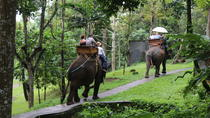 Bali Elephant Safari Tour with Lunch, Bali, Nature & Wildlife