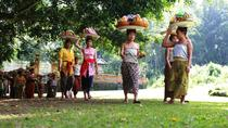 Private Tour: Best of Ubud, Ubud, Private Sightseeing Tours