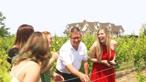 Wine Tasting and Pairing Afternoon Tour, Niagara Falls & Around, Wine Tasting & Winery Tours
