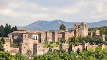 Alcazaba and Nasrid Palace in Malaga Private Walking Tour, Malaga, Private Sightseeing Tours