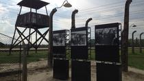Auschwitz-Birkenau and Wieliczka with Private Transport from Krakow, Krakow, Private Sightseeing ...