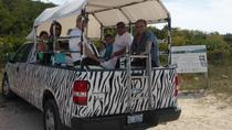 Providenciales Sunset Safari Tour, Providenciales, Half-day Tours