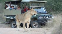7 day Kruger Park from South to North open vehicle Safari Adventure, Kruger National Park,...