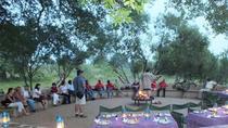 Kruger Park Sunset Safari With African Boma Dinner, Kruger National Park, Safaris