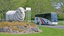 Full-Day Waitomo and Rotorua Tour from Auckland, Auckland, Day Trips