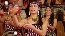 Full-Day Waitomo and Rotorua Tour from Auckland