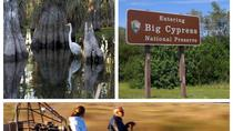 Aerobarco Miccosukee e Big Cypress National Preserve Adventure, Miami, Eco Tours