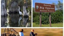 Halbtägige, private Everglades-Tour mit Miccosukee-Sumpfboot und Big Cypress National Preserve, Miami, Private Sightseeing Tours
