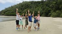 Small-Group Daintree Rainforest Tour, Cairns & the Tropical North, 4WD, ATV & Off-Road Tours