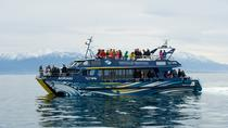 3-Day Kaikoura Whale Watching and Christchurch Tour, Christchurch, Multi-day Tours