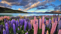 4-daagse Great Southern Island Circle Tour vanuit Christchurch, Christchurch, Multi-day Tours