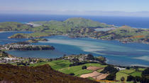 6-Day South Island Southern Heritage Tour from Christchurch, Christchurch, Nature & Wildlife