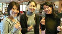 Auckland Shore Excursion: West Coast Wineries Tour, Auckland
