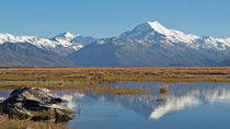 Explore Mount Cook from Christchurch, Christchurch, Swim with Dolphins