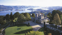 Full-Day Dunedin Tour with Larnach Castle & Gardens, Speight's Brewery, Dunedin & The Otago ...