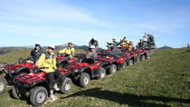 Kaikoura Quad Bike Tour desde Christchurch, Christchurch