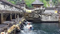 Tirta Empul And Rice terrace Half Day Tour, Ubud, Cultural Tours