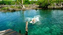 Holbox Island Tour from Cancun, Cancun, Full-day Tours