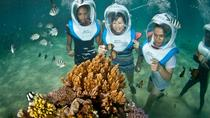 Aquanauts Sea Walking in Nusa Lembongan, Bali, Day Cruises