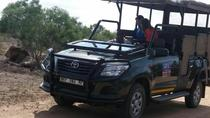 Full-Day Kruger National Park Safari, Kruger National Park, Day Trips