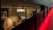 Amarone Wine Tour and Tasting of 9 Wines in a Modern Winery, Verona, Wine Tasting & Winery Tours