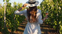 Half-Day Rose Private Wine Tour With Gourmet Lunch in French Riviera, Cannes, Wine Tasting & Winery...