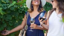 Lugana wine tour with private panoramic boat on Lake Garda, Verona, Wine Tasting & Winery Tours