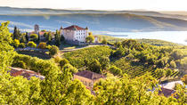 Rose Private Wine Tour of French Riviera with Lunch and Two Wineries Visit, Cannes, Wine Tasting & ...