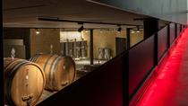 Wine Tour and Tasting in a Modern Amarone Winery , Verona, Wine Tasting & Winery Tours