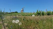 Private Beaujolais Wine Tour from Lyon, Lyon, Private Sightseeing Tours