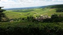 Private Tour: Burgundy Wines Full Day Tour from Beaune , Beaune, Private Sightseeing Tours