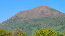 Mt Vesuvius Half-Day Trip from Naples, Naples, Walking Tours