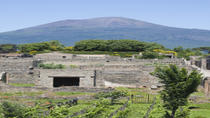 Naples City and Pompeii Half-Day Sightseeing Tour from Sorrento, Sorrento