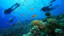 Pulau Payar Island Snorkeling and Diving Day Tour Including Lunch, Langkawi, Day Cruises