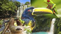 4 IN 1 SLOTH WATER FALLS RAIN FOREST VOLCANOES, Liberia, Private Sightseeing Tours