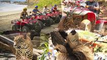 BEACH-MOUNTAIN & SLOTH REFUGE ATV TOUR, Liberia, 4WD, ATV & Off-Road Tours