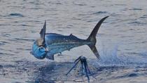 Papagayo Gulf Fishing Trip, Liberia, Other Water Sports